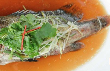 Gurame Fish /pcs